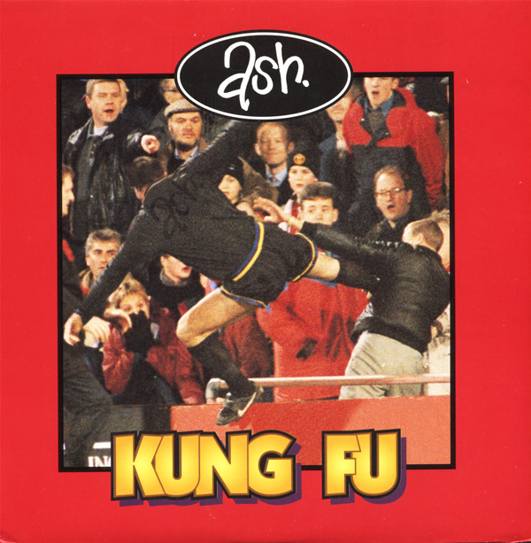 ash-kung-fu-infectious